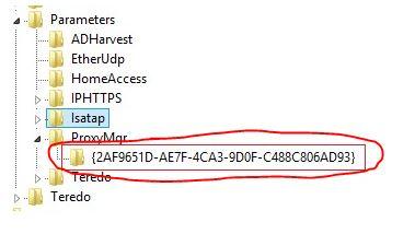 ProxyMgr Registry Key